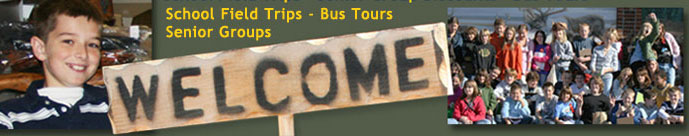 Museum Group Tours